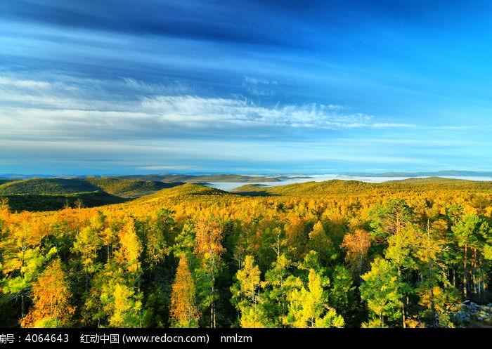 森林树林 大兴安岭之秋  请您分享: 素材描述:红动网提供森林树林精美