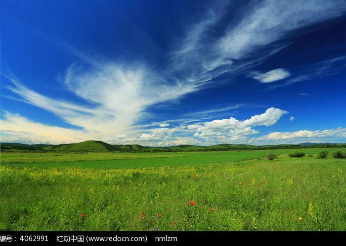 呼伦贝尔原野图片