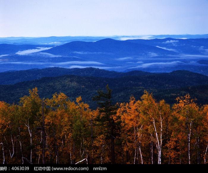 茫茫林海云雾图片,高清大图_森林树林素材