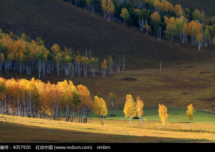 山林秋色图片