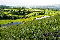 湿地地理风光