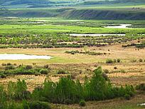 湿地草甸风光