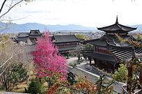 木王府里的花与建筑