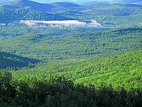 原始森林山峦起伏