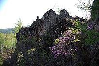 南娘河林场悬崖
