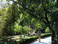 北京竹园风景