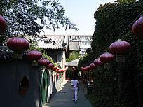 北京竹园庭院式风景