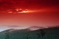 朝霞染红原始森林