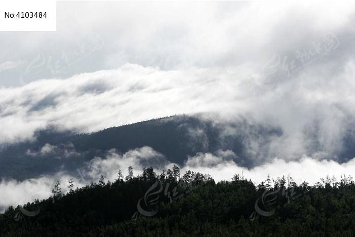 大雾弥漫的山峦图片,高清大图_森林树林素材