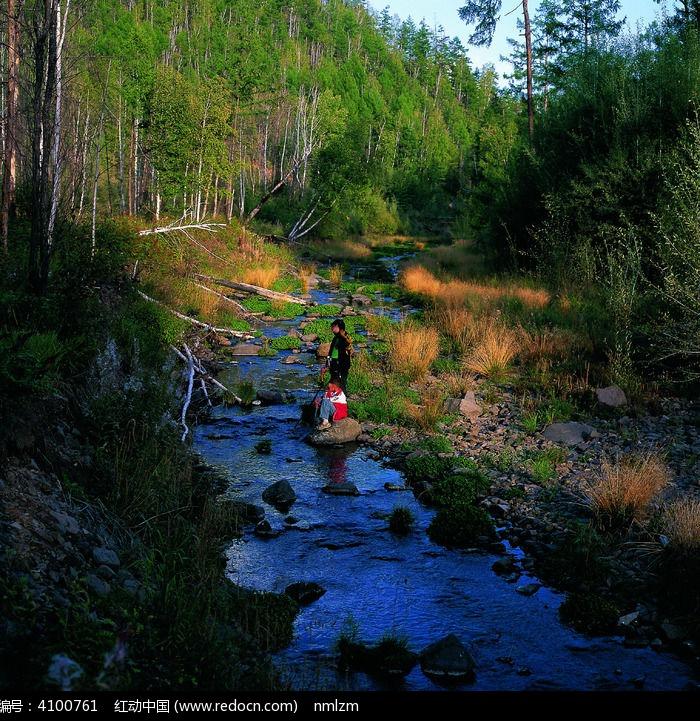 森林小溪图片,高清大图