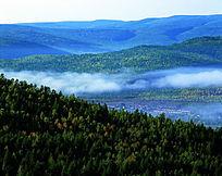 原始森林晨雾飘渺