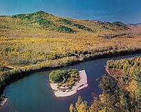原始森林中的河流