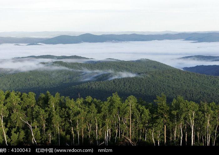 云雾大森林高清图片下载 编号4100043 红动网