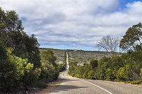 阿德莱德袋鼠岛迷人的热带公路