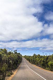 阿德莱德袋鼠岛上笔直的公路