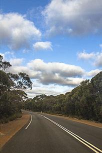 澳洲袋鼠岛公路拐弯处