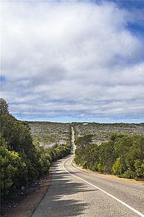 澳洲袋鼠岛美丽的热带公路