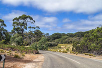 澳洲袋鼠岛农场上向左转公路