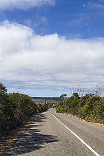 澳洲袋鼠岛自驾游途经热带雨公路景象