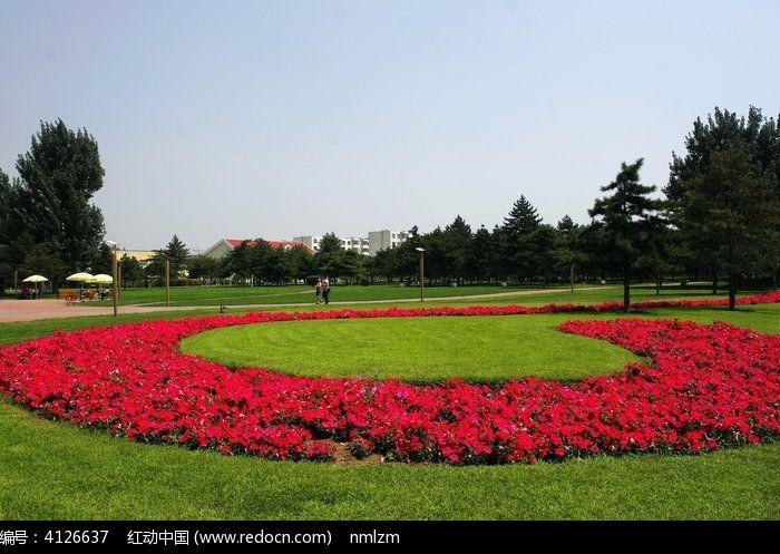 包头 绿化带花圃图片