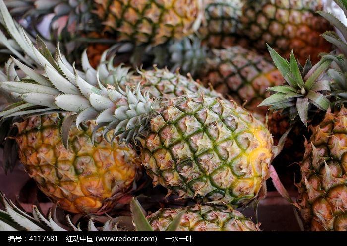 菠萝图片,高清大图_水果蔬菜素材
