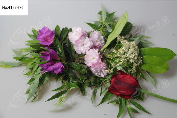 春天各种草木花朵高清图片下载 编号4127476 红动网