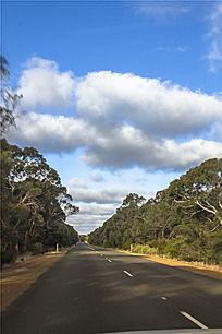袋鼠岛公路