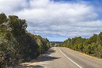袋鼠岛热带雨林公路沿途风光