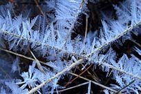冬季河面 冰凌