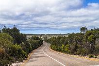 国外热带雨林公路