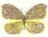 蝴蝶装饰画