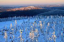 大兴安岭冬季原始森林