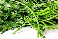 绿色空心菜