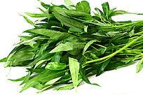 有机绿色新鲜空心菜