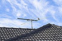停留在屋顶天线杆上的一只鸽子
