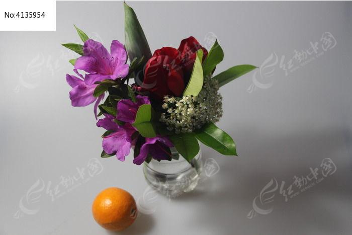 原创摄影图 动物植物 花卉花草 鲜花和水果  请您分享: 红动网提供
