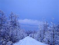 原始森林冰雪公路