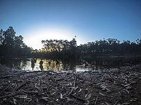 澳洲野生公园的湖景