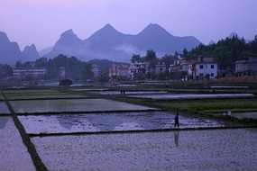 桂林市郊风光