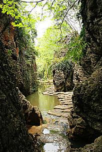贵州安顺天星桥天然盆景