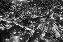 悉尼城市黑白夜景