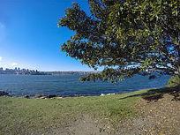 悉尼港港湾风光