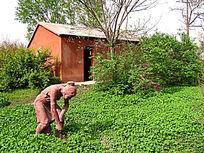 大河村遗址妇女播种雕塑