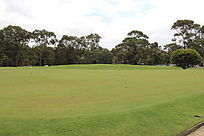 绿色高尔夫球场