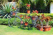 自行车花艺