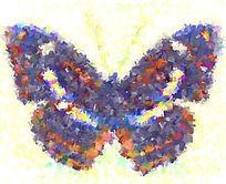 蝴蝶油画印花