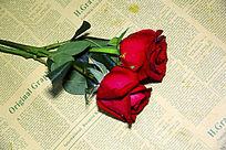 两枝红玫瑰