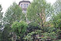 林间的住宅