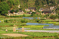 黔东南村庄和种菜的塑料大棚