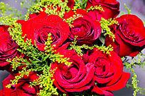 七夕红玫瑰
